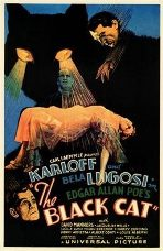 Filme O Gato Preto, 1934, The Black Cat, online, dublado, legendado, completo, portugues, pt, br, filme, download, Edgar G. Ulmer, Boris Karloff, Bela Lugosi, O Gato Preto, assistir, pt, br, antigo, classico, download, torrent, gratuito, gratis, filme online, classico, antigo, filme, movie, free, full, gratis, complete, film, dominio publico, velho, public domain, legendas, com legenda, legenda, brasil, portugal, traduzido, cinema, livre, libre, cinema libre, cinema livre, cinemalivre, cinemalibre, subtitle, completos, legendados